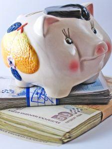 1102932_piggy_bank_3.jpg