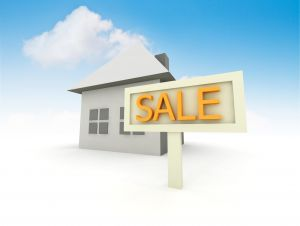 1150489_property_for_sale_5.jpg
