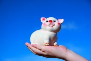 1331143_piggy_bank.jpg