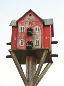 1370565_bird_house_for_doves.jpg