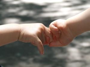 1391967_baby_hands.jpg