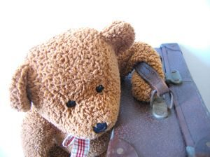 363466_more_travel_teddies_series_n